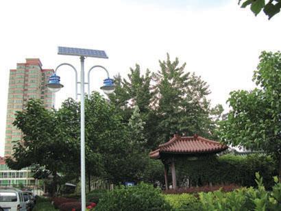 太阳能庭院灯CGDT023