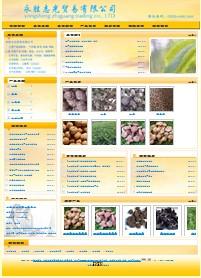 名称:食品类公司网站