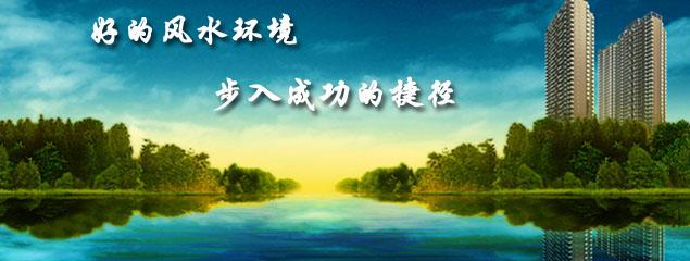 banner图片2